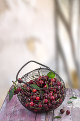 Fresh ripe cherries in an iron basket on a old red board exterior kitchen table