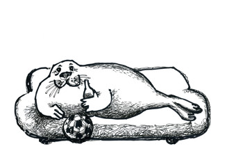 Seal watching football at home on the couch.