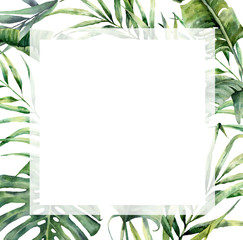 Watercolor tropical big frame with exotic palm leaves. Hand painted floral illustration with banana, coconut and monstera branch isolated on white background for design, fabric or print.