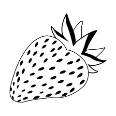 Strawberry fruit isolated vector illustration graphic design