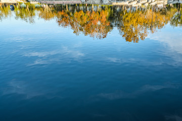 Upside down autumn trees with blue sky reflection in water.
