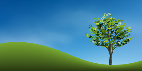 Tree on green grass hill with blue sky. Abstract background park and outdoor for landscape idea. Use for natural article both on print and website. Vector.