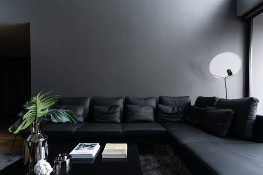 Cozy black leather sofa in composition with minimal black and white floor lamp with gray painted wall background and artificial plant in glass vase in the front / Cozy Intetrior concept /minimal style
