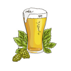 vector contour color gold beer drink in glass with foam hop leaf on white Octoberfest