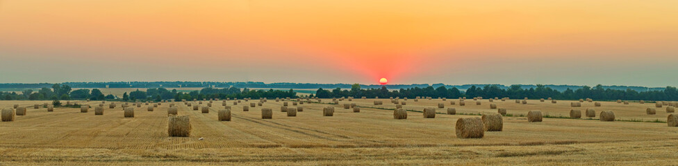 wheat field with bale of straw after harvest under the western sun Wall mural