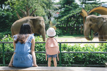 Happy mother and daughter watching and feeding elephants in zoo. Wall mural