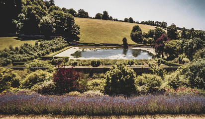 Old English Country Cottage Garden - Shot on Film