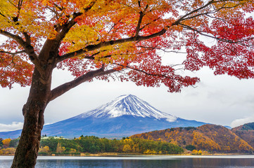 Wall Mural - Autumn Season and Fuji mountains at Kawaguchiko lake, Japan.