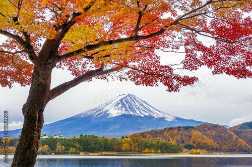 Wall mural Autumn Season and Fuji mountains at Kawaguchiko lake, Japan.