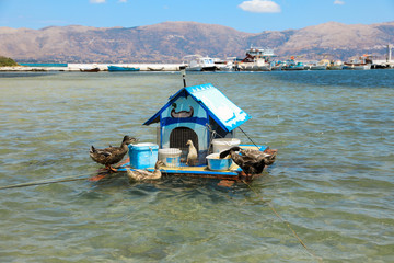 House for ducks on the water in the Elafonisos village island, Laconia, Peloponnese, Greece June 2018.