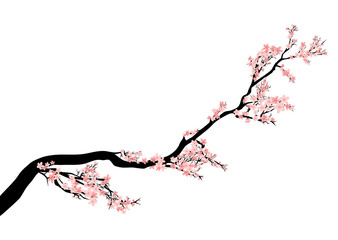 blooming cherry tree branch - spring season asian style vector decor
