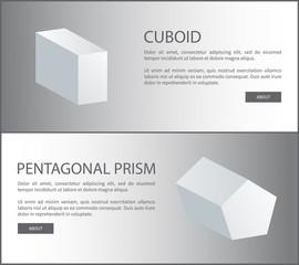 Cuboid and Pentagonal Prism Vector 3D Shaped Web