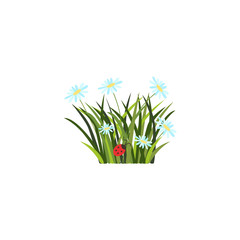 vector flat easter holiday, spring meadow icon with green fresh grass, white daisy flowers ladybug Element for poster banner template design. Isolated illustration on a white background.