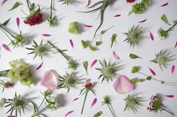 fond fleurs