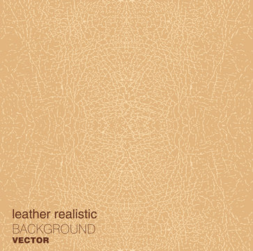 Vector realistic beige leather texture