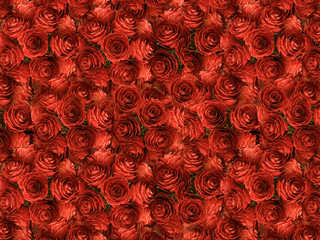natural red roses background,top view of rose, valentine card,wedding flowers ,3d illustration,3d rendering