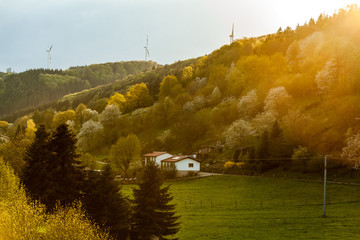 Landscape Black Forest with mountains, Germany