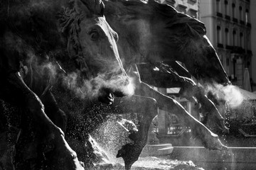 Detail of the renovated Fountain Bartholdi at Place des Terreaux, Lyon, France.