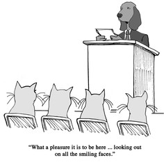 Friendly audience