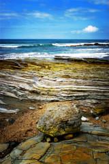 Low Tide Coastline