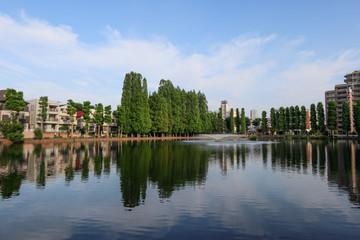 別所沼公園 さいたま市南区