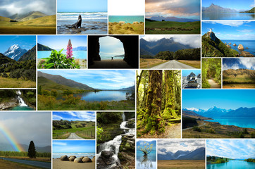 Collage of New Zealand nature