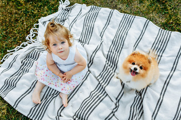 Little girl and pets. The girl and a dog sitting on a green park. Pedigree dogs Spitz. Funny animals. Outdoor picnic. the view from the top