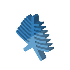 Human Ribs isometric right top view 3D icon