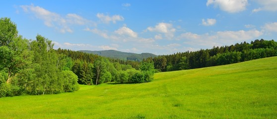 Bavarian landscape with meadows and woods under a blue sky with a few clouds. Upper palatinate, county of Cham, near the village Traitsching.