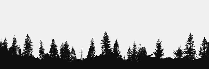 realistic forest silhouette on white background.View to panorama of trees.Vector nature design