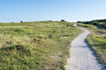 Berkheide dunes south of Katwijk aan Zee/ Netherlands