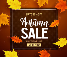 Autumn sale vector banner template with frame and sale text in fall season leaves background for seasonal discount promotion template. Vector illustration.