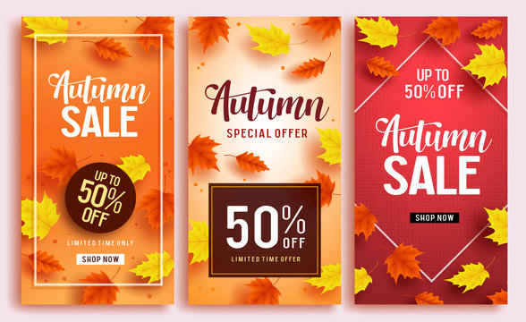Autumn sale vector poster design template with 50% off sale text and colorful maple leaves background for fall season shopping discount promotion. Vector illustration.