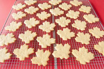 Cooling Rack of Leaf Cookies