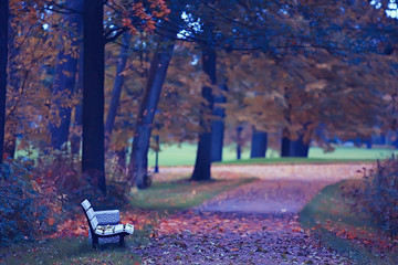 bench in autumn landscape / city park with orange trees on the branches, a street bench in autumn forest landscape,  alley. Concept of weekend in the city park