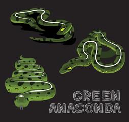 Snake Green Anaconda Cartoon Vector Illustration