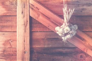 Bundles of fresh garlic dried on vintage wooden wall