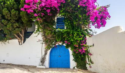 Totally blue and white city Sidi Bou Said, Tunisia