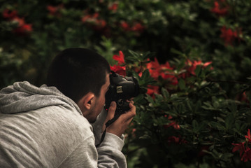 Taking picture of flowers