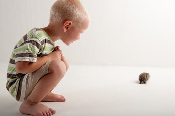 Cute little boy is looking at small hedgehog in studio on white background. Concept of healthy lifestyle in nature, love of peace, vegan, vegetarian style, respect for nature, childhood in village
