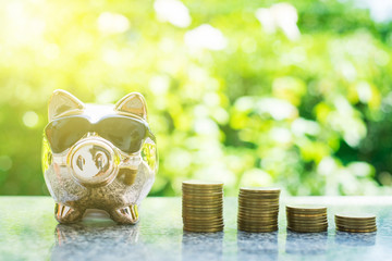 Cute piggy bank with gold coin with green bokeh background.saving concept.
