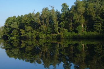 Calm river with reflexions of trees and a clear blue sky