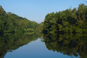 Calm river surrounded by trees with many reflections in the water