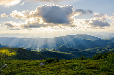 beautiful mountainous summer landscape. sun ray fall on hillside. sun behind the cloud. lovely scenery in afternoon