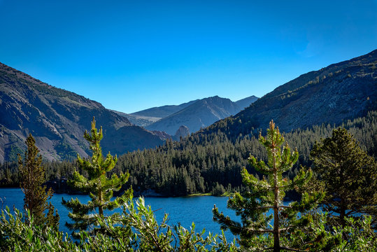 Trees frame a lake in the alpine area of Tioga Pass in Yosemite National Park in California.