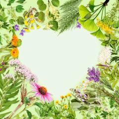 Heilpflanzen, Herzrahmen