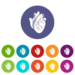 Human heart organ icons color set vector for any web design on white background