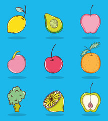 Set of fruits collection