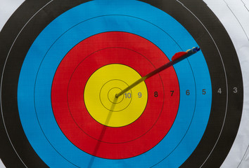 A colorful shield with an arrow shot in the center itself, a good shot.