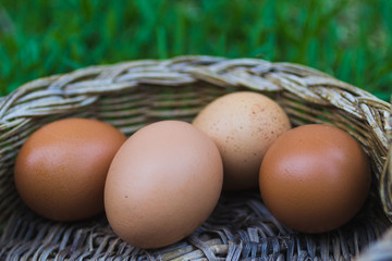 Close up of eggs in a basket against blurred green background